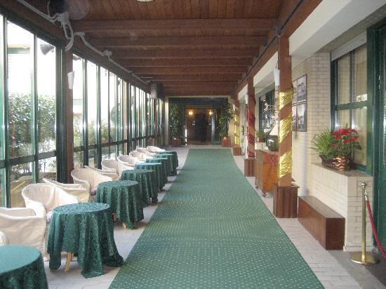 Hotel Club Dante : Veranda