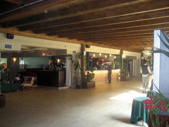 Hotel Club Dante : Bar