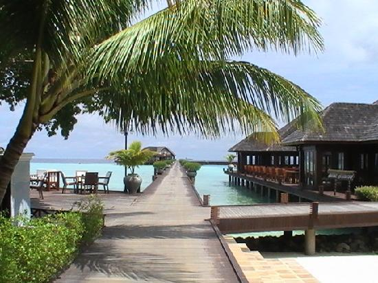 Olhuveli Beach & Spa Maldives: paradi wa na