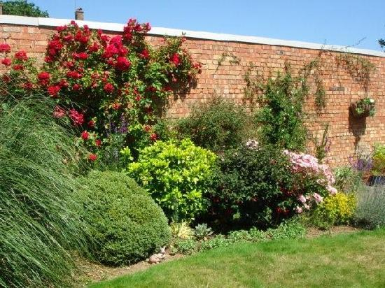 Arden House Bed & Breakfast Bexhill: Garden