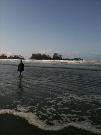 Sea Star Beach Retreat: Morning walk at Chesterman