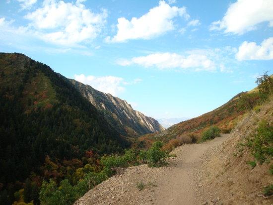 Mill Creek Canyon: vistas millcreek canyon