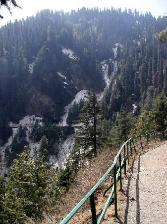 Dunga Gali Pine Line Track: Mid April, track partially covered under snow and ice