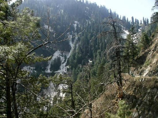 Nathia Gali, Pakistan: Very little descent or ascent.