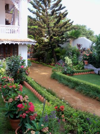 Delight - Fort Kochi: Garden of the Delight
