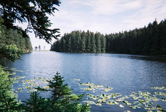 Kodiak Island, อลาสกา: Lake Gertrude - Close to Bayview Inn