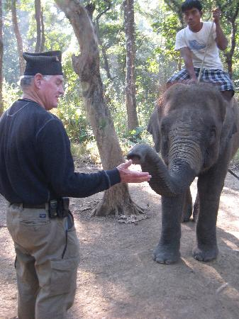 Chitwan Jungle Lodge: Elephants remember your smell - forever.