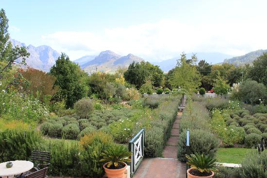 Residence Klein Oliphants Hoek: View across garden
