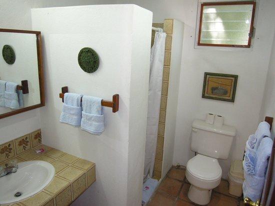 Seven Seas Resort: Bath & large shower