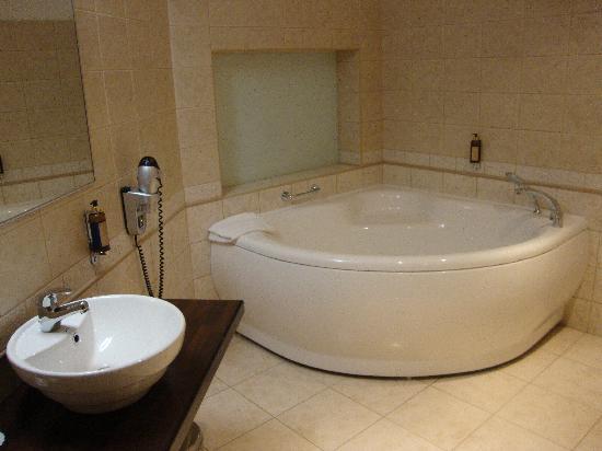 Hanza Hotel: bathroom