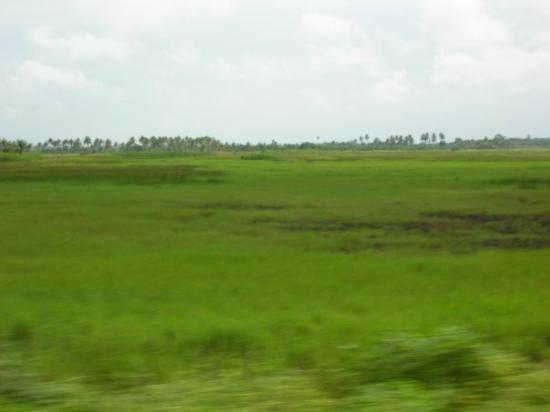 Cotonou Foto