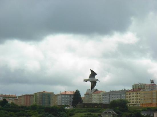 Ferrol, Spain: flying