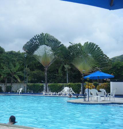 Hotel Club del Sol: The pool