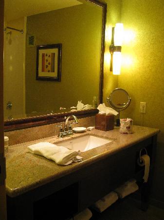 Embassy Suites by Hilton Omaha-La Vista/Hotel & Conference Center: bathroom