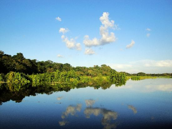 Manaos, AM: The Amazon River