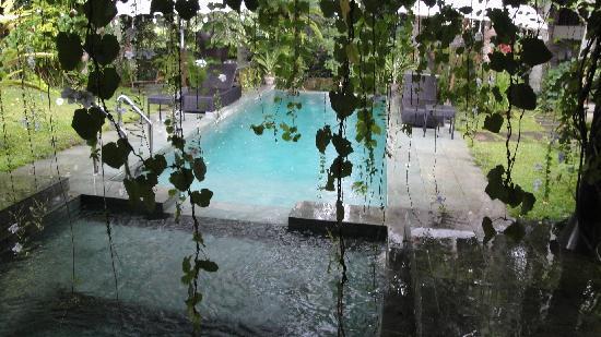 Villa Puri Darma Agung : Pool area