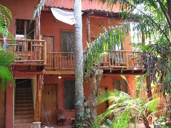 Tico Adventure Lodge: Check out the real jungle feel here!