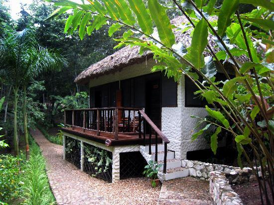 Table Rock Jungle Lodge: Our room from the outside