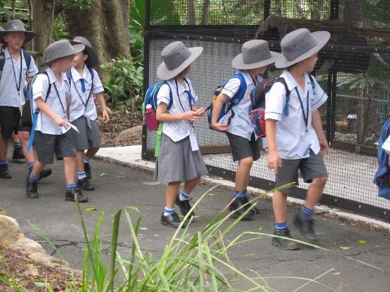 Lone Pine Koala Sanctuary: Australian School Kids