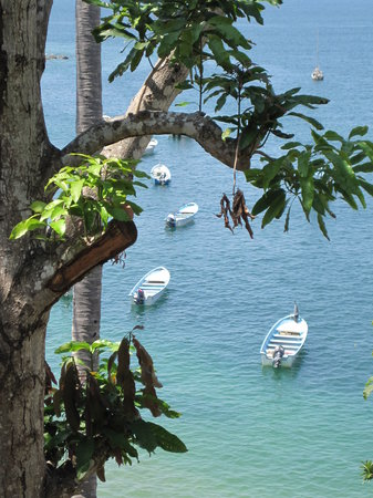 Yelapa, Meksyk: lots of gorgeous views everywhere