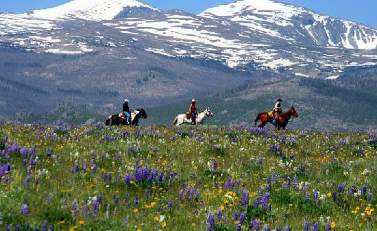 Paradise Guest Ranch: Riding with a Bighorn Mountain View
