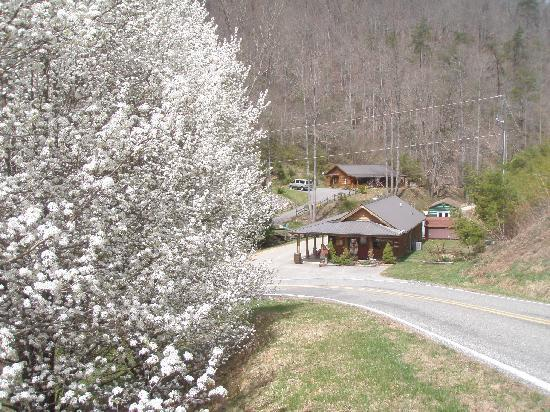 Lands Creek Log Cabins: the road dead-ends down in a valley