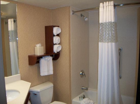 Hampton Inn Des Moines-West: Bath