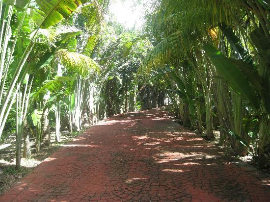 Casa Blanca: Red Brick Road (going down to our beach)