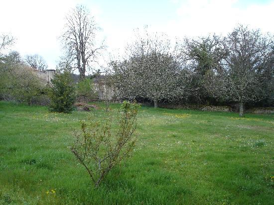 Chambres d'hotes Saint Emilion Bordeaux: Beau Sejour: Jardín detrás de la casa