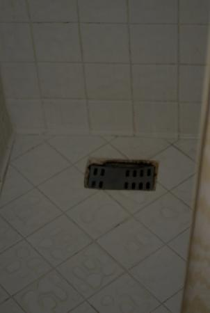 Hotel Krasnapolsky : Hotel isn't dealing with mildew in shower