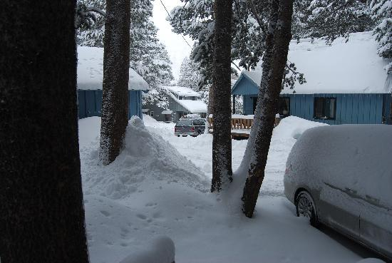 June Lake, Kalifornien: The view from the porch after a night of snow
