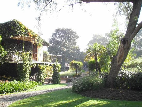 Quinta de las Flores: hotel grounds
