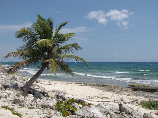 TRS Yucatan by Palladium: just beautiful!