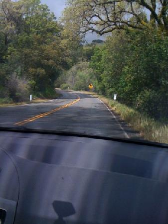 The drive to Fort Bragg - Picture of Fort Bragg, Mendocino County