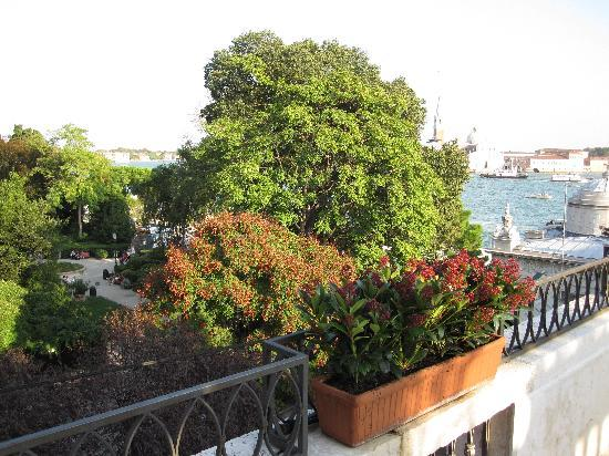 Baglioni Hotel Luna: View from our Balcony