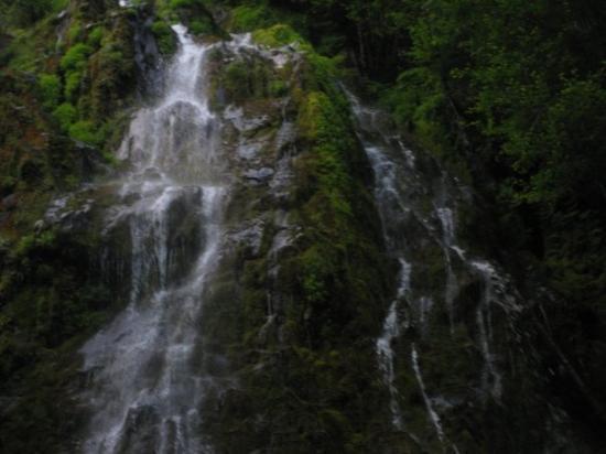 Eugene Foto