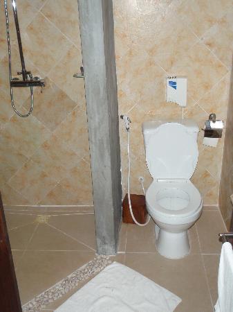 Pavillon d'Orient Boutique-Hotel: Toilet and shower