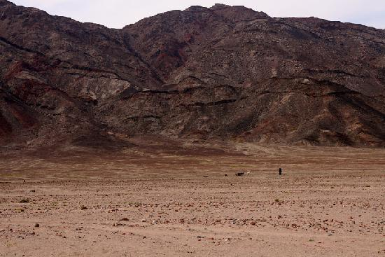 Hike Dahab: In the distance