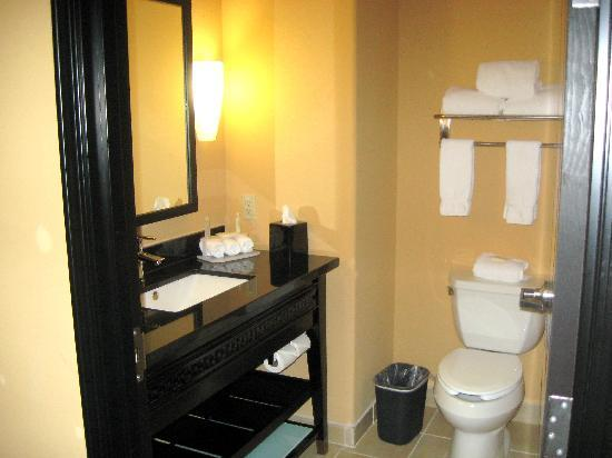 Holiday Inn Express Hotel & Suites Dallas-Medical Center: Bathroom