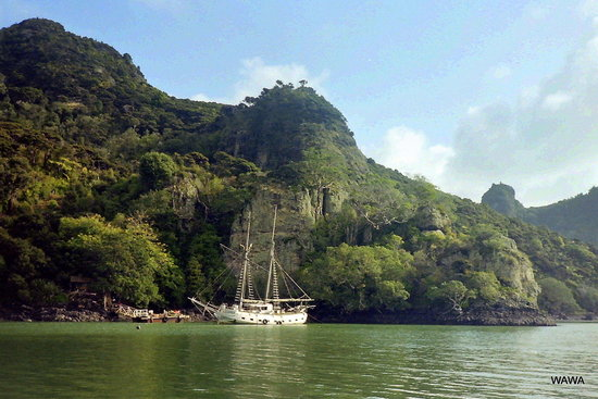 Whangaroa New Zealand  city pictures gallery : Whangaroa Harbour New Zealand : Address, Tickets & Tours, Body of ...