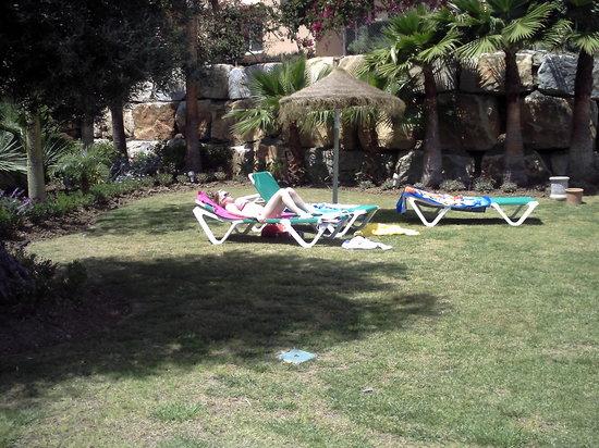 Villas Los Flamencos: pool area