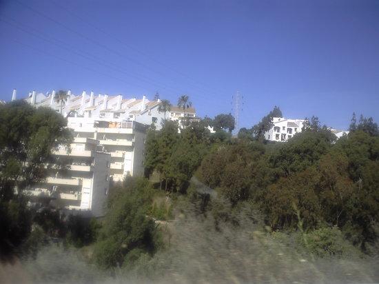 Villas Los Flamencos: local area