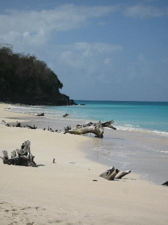 English Harbour, Antigua: One of the beaches we stopped at