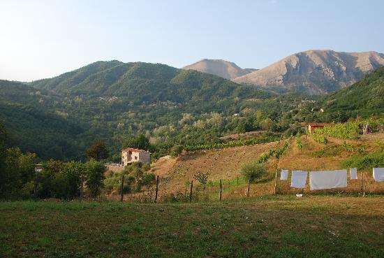 Tuscany Meanders holiday houses: garden