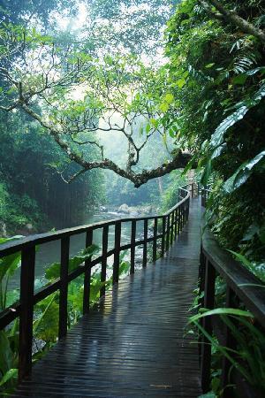 Maya Ubud Resort & Spa: 3