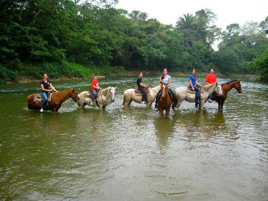 Belize Jungle Dome: Horseback Ride