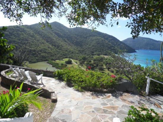 Guana Island Picture