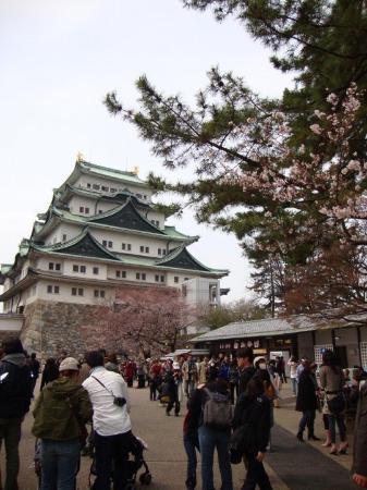 นาโกย่า, ญี่ปุ่น: Nagoya castle