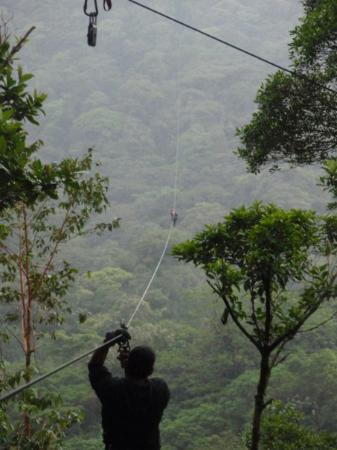 The Original Canopy Tour Monteverde Costa Rica - Zip-Line & Monteverde Costa Rica - Zip-Line - Picture of The Original Canopy ...