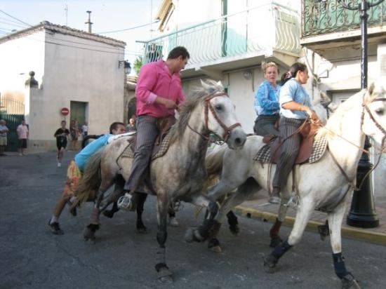 Vergeze, France : Délután megfuttatták az állatot a faluban, nagy vasrácsok megül figyeltük az eseményeket. A bika